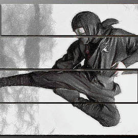 Ninja Warrior by Mario Carini