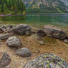 North Jenny Lake Boulders by Angelo Marcialis