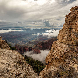 North Rim Fog 3 - Grand Canyon National Park - Arizona by Brian Harig