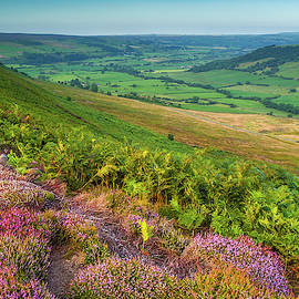 North York Moors National Park by David Ross