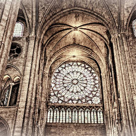 Notre Dame Cathedral Toned by Kay Brewer