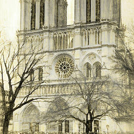 Notre Dame Photo Sketch by Mary Bedy