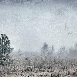 November Blues. Horytsya, 2018. by Andriy Maykovskyi