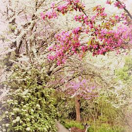 A Spring Visitor by Jessica Jenney