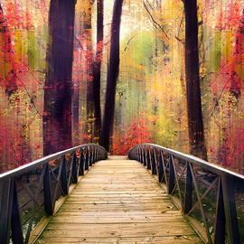Footbridge Fantasy by Jessica Jenney