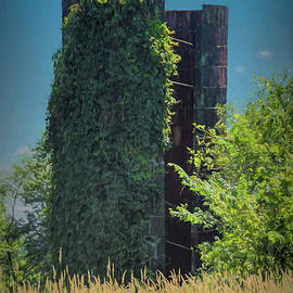 Ohio Ivy Covered Silo by Janice Pariza