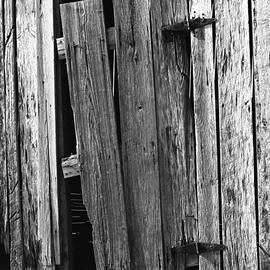 Old Barn Door by Rodger Painter
