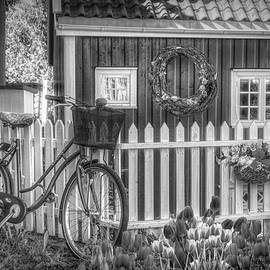 Old Bicycle in the Garden in Black and White by Debra and Dave Vanderlaan