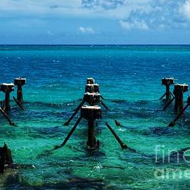 Old Coaling Docks in the Dry Tortugas by Dale Kohler