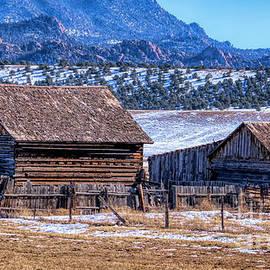 Old Colorado Homestead by Janice Pariza