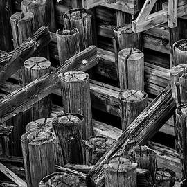 Old Dock Pilings In Black And White by Garry Gay