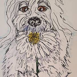Old English Sheepdog by Geraldine Myszenski