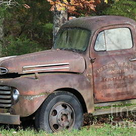 Old ford truck 2 by Dwight Cook