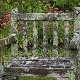 Old Garden Chair by Alida M Haslett