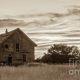 Old Homestead In Sepia by Robert Bales