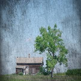 Old House And Tree by Jeff Swan