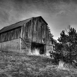 Old Inkom Barn by Michael Morse