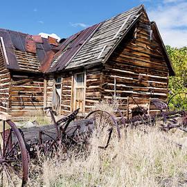 Kathleen Bishop - Old Log Cabin and Hay Rake