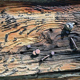 Old Nails In Old Wood by Kae Cheatham