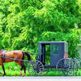 Old Order Transportation by Lenore Locken
