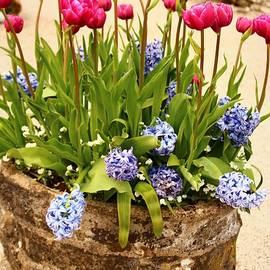 Old Stone Flower Pot by Loretta S