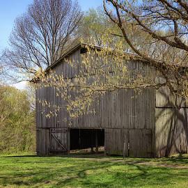 Old Tobacco Barn by Susan Rissi Tregoning
