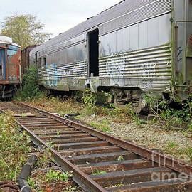 Steve Gass - Old Train Siding 38