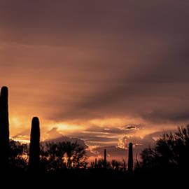 Old West Sunset by Elaine Malott