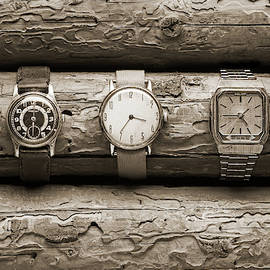 Old wristwatches on tree trunks. by Andrei Kuznetsov