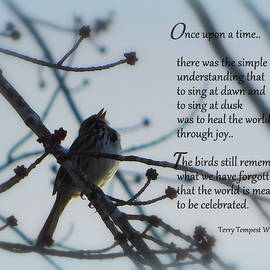 Once upon a time by Karen Cook