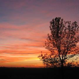 Ontario Sunset 6013 by Maciek Froncisz