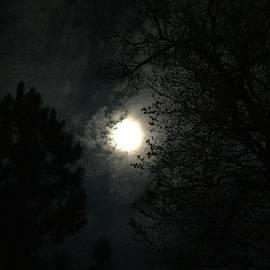 Orange Halo Moon by Adrienne Hantz Kelley
