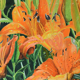 Orange Lilly's by Wade Clark