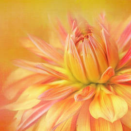 Orange Painted Dahlia by Terry Davis