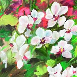 Marina Wirtz - Orchids