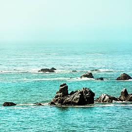 Oregon Coast 0593 by Amyn Nasser Photographer