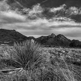 Organ Mountains, New Mexico Black and White by Chance Kafka