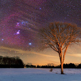 Orion Molecular Cloud Complex over lone elm tree 2 by Dustin Goodspeed