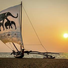 Oruwa Boat Sri Lanka Sunset by Cindi Alvarado