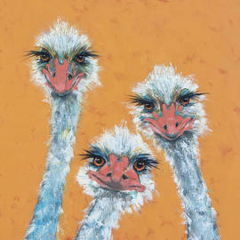 Ostrich Sisters by Jani Freimann
