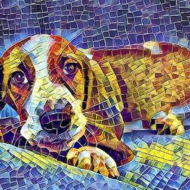 Otis The Potus Basset Hound Dog Art  by Don Northup