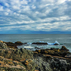 Otter Cliffs Acadia by Dan Sproul