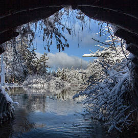 Out Of The Culvert Into Winter by Ron Wiltse