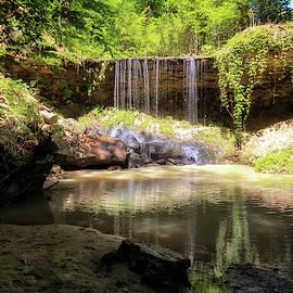 Owens Creek Waterfall by Susan Rissi Tregoning