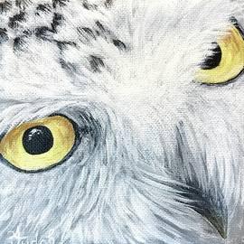 Owl #2 by Alana Judah