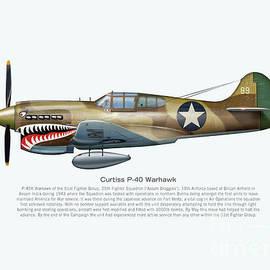 P-40 Warhawk by Stuart Willard