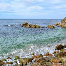 Pacific Grove Coast by Connor Beekman
