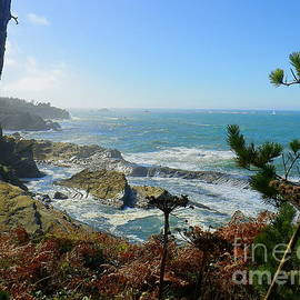Pacific Oregon Is Beautiful by Art Sandi
