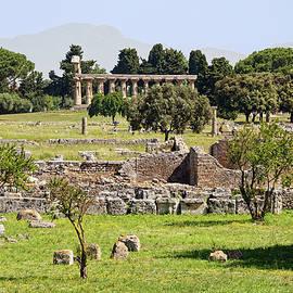 Paestum Ruins II by Sally Weigand