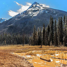 Paint Pot And The Rockies by Robert Bales